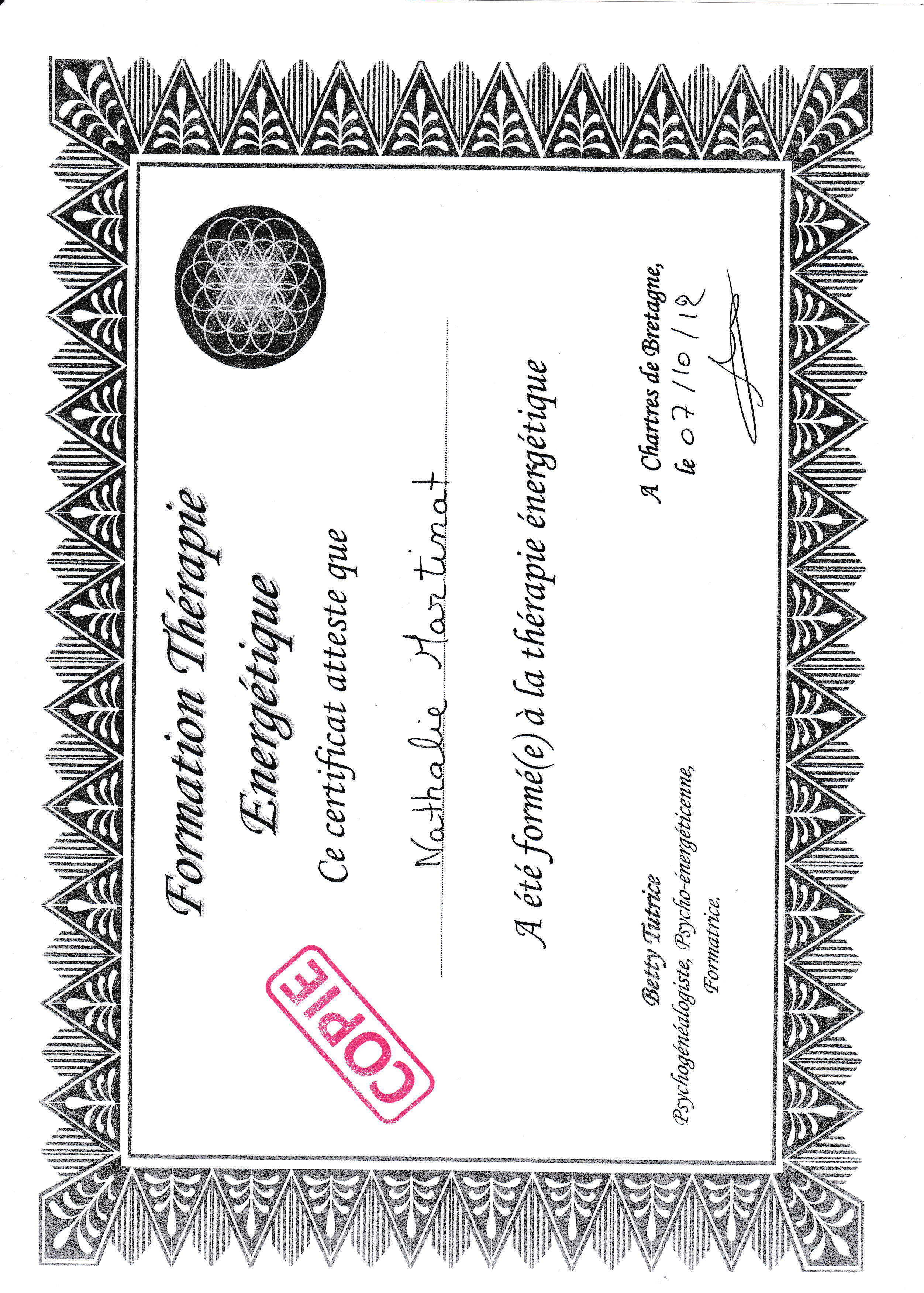 57a32810e752f_certificat therapie energetique 2012.pdf