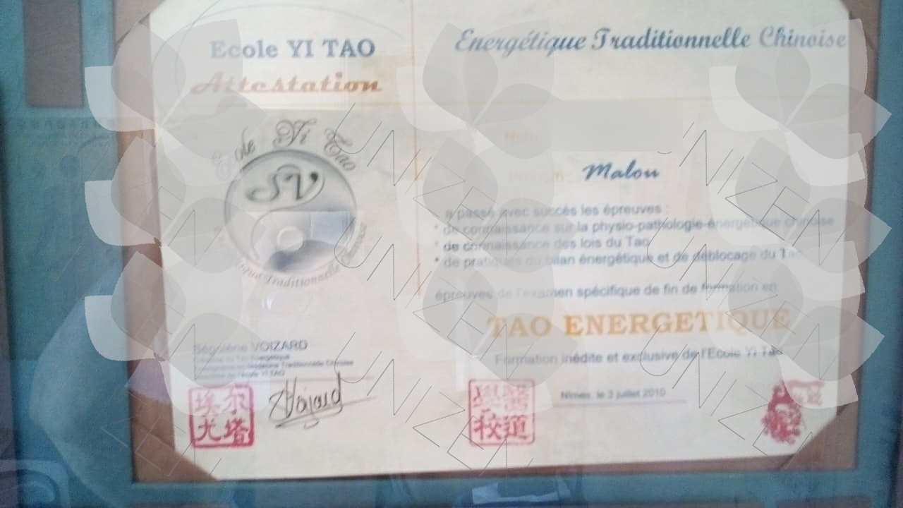 5ae328a6a821b_MASS.TAO ENERGETIQUE.jpg